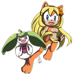 Comm.: Orange and Steenee by S-concept