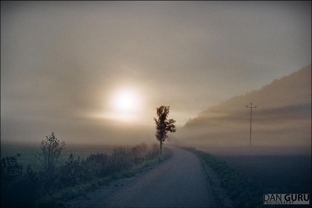 Through Fog - Towards East by RoqqR
