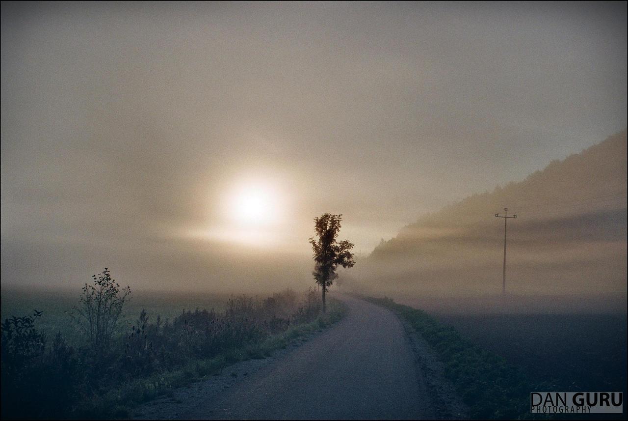 Through Fog - Towards East