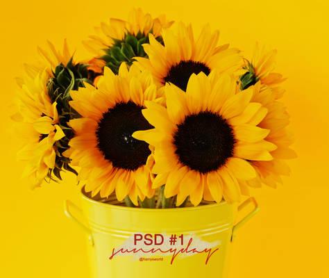 PSD #1 : sunnyday
