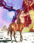 Sagittarius: The Centaur