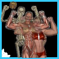 SheFreak4 Anatomy by KickAir8P