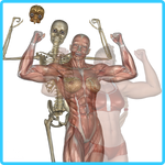 SheFreak4 Anatomy