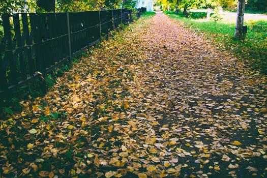 Autumn | Set 2019
