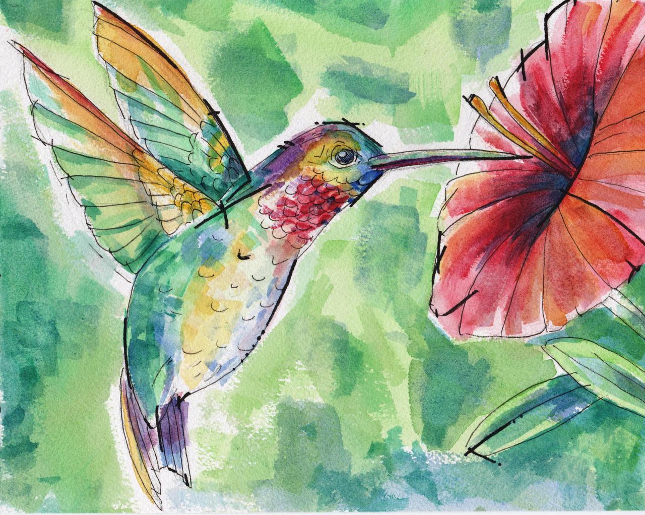 Images Of Hummingbird Watercolor Wallpaper Calto