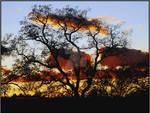 Serengeti Sunset by StickANeedleInMyEye