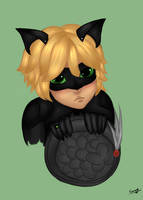 Chat Noir by xKiaraAngelx