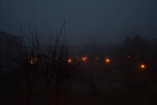 Lanterns in the Mist