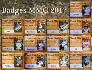 Badges from MMC 2017