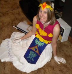 Toon Zelda Cosplay
