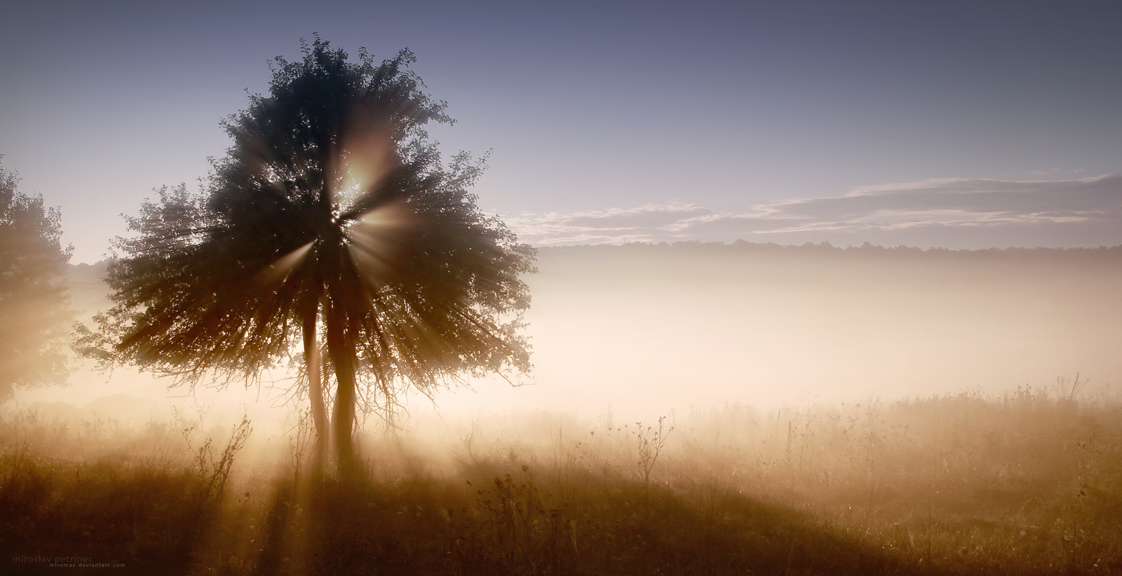 Golden Sunrise by miroslav-petrinec