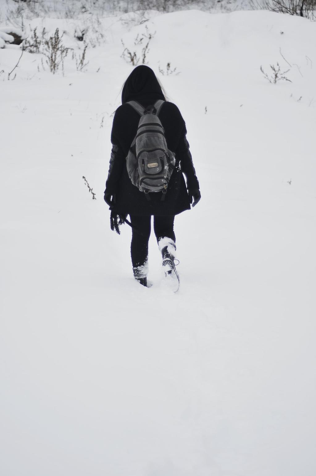 Wanderer by SolveigParks