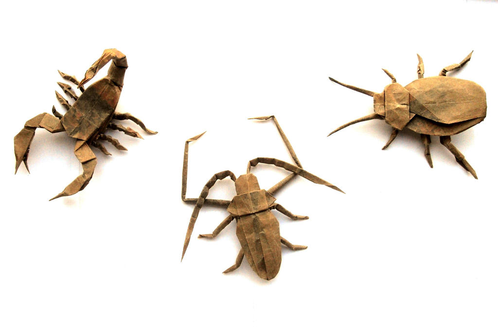 Insect Crafts For Preschoolers
