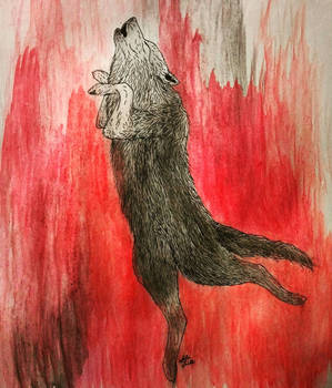 The Wolf Dance
