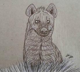 Hyena Ballpoint Pen Sketch