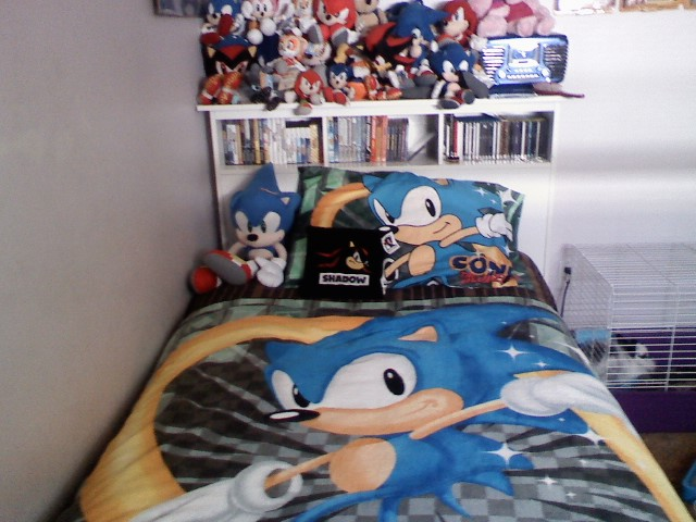 Related Keywords & Suggestions for sonic bed