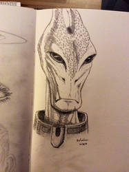 Daily Sketch - Salarian