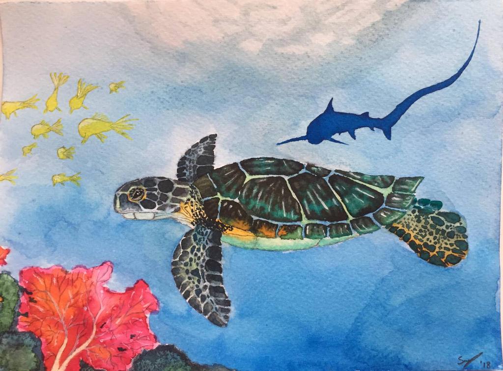 Sea turtle by Smunten16