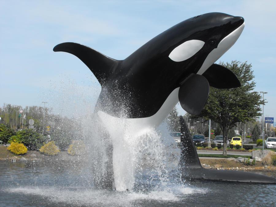 Stock: Orca III