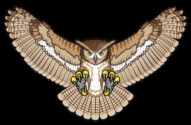 2020 Monticello Sages owl version -no M