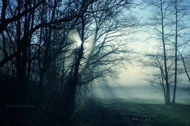 Sun breaks through by Janine-Autumn