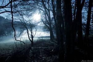 Nebel by Janine-Autumn
