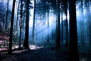 blue light by Janine-Autumn