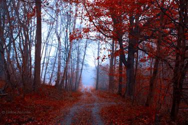 autumn day by Janine-Autumn