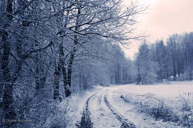 Winter 2 by Janine-Autumn