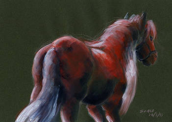 Red horse by ScalerandiArt