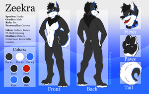 Zeekra - Reference Sheet by FoxRaver