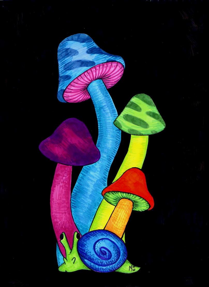 Magic Mushrooms by Magic Mushroom Drawings