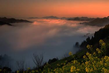 Sea of clouds by elkynz