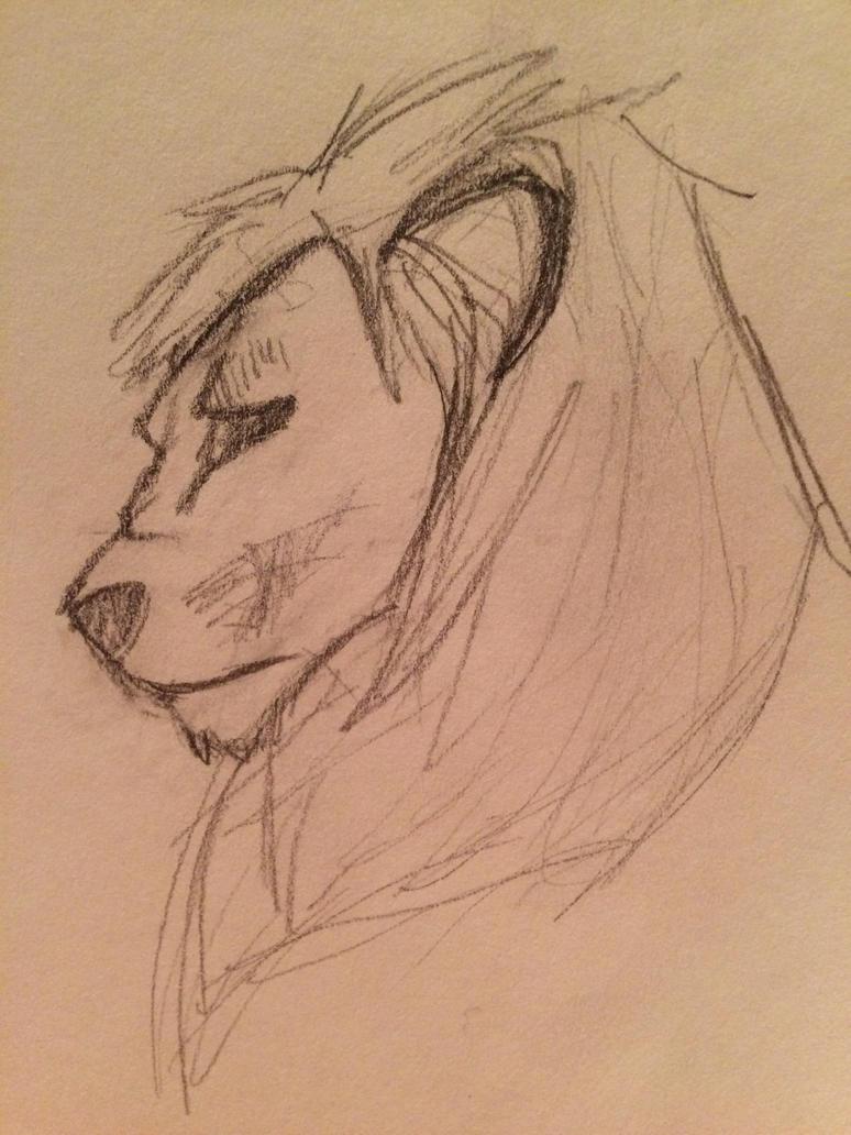 Lion head 1 by BriMK