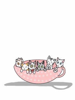 Kitties in a cup