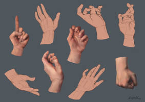 Hands Study by kevywk