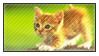 Pat The Cat by adhiwangsa