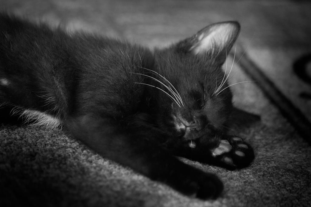 It was a long day by oTckyku