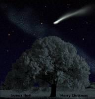 Joyeux Noel - Merry Christmas