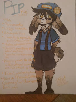 Pip reference sheet (I'm 2 lazy 2 edit this owo)