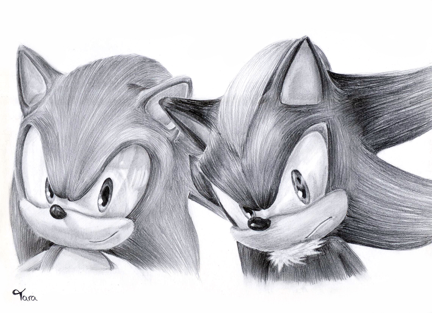 Sonic and Shadow by taratjah on DeviantArt