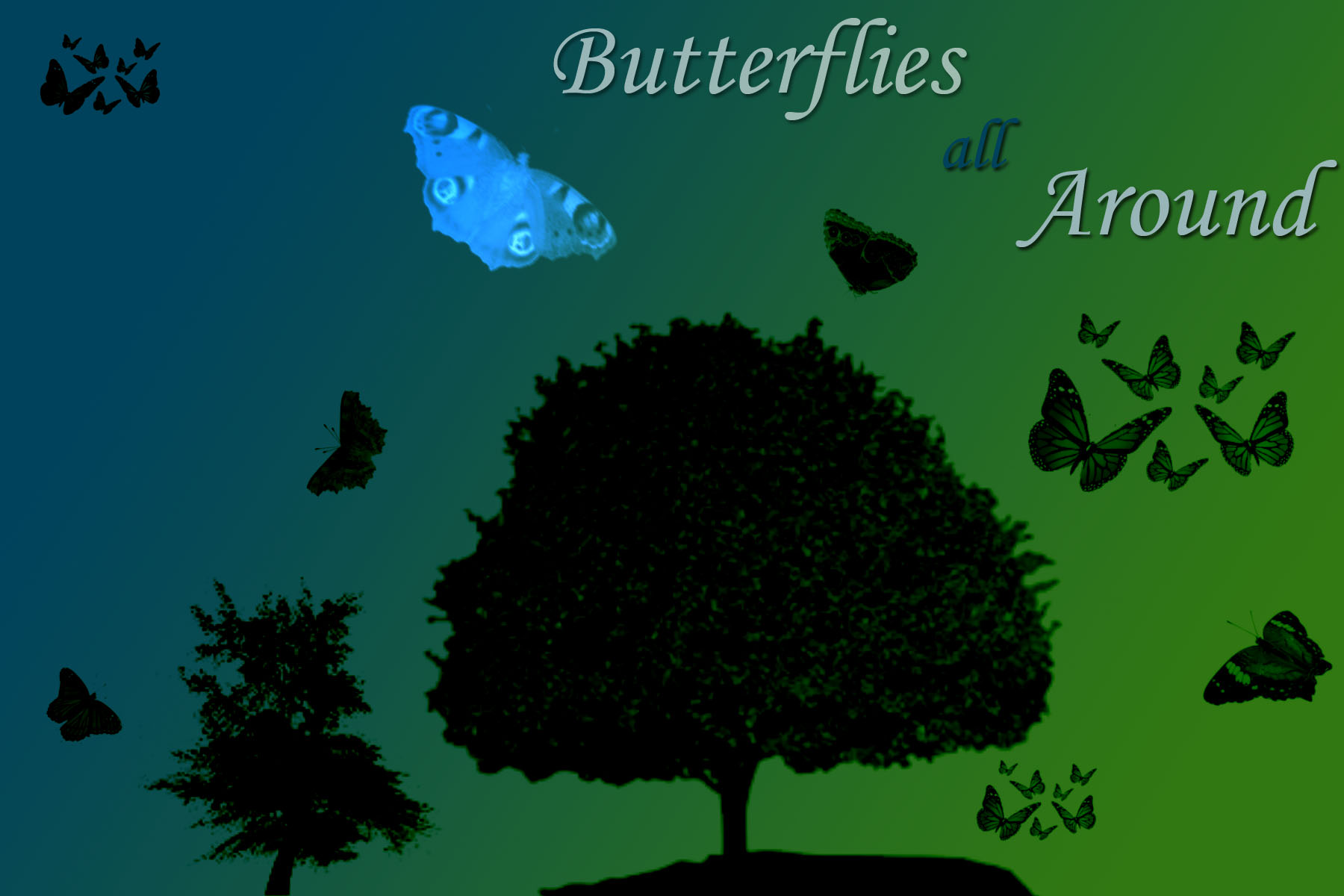 Butterflies All Around by Bickhamsarah