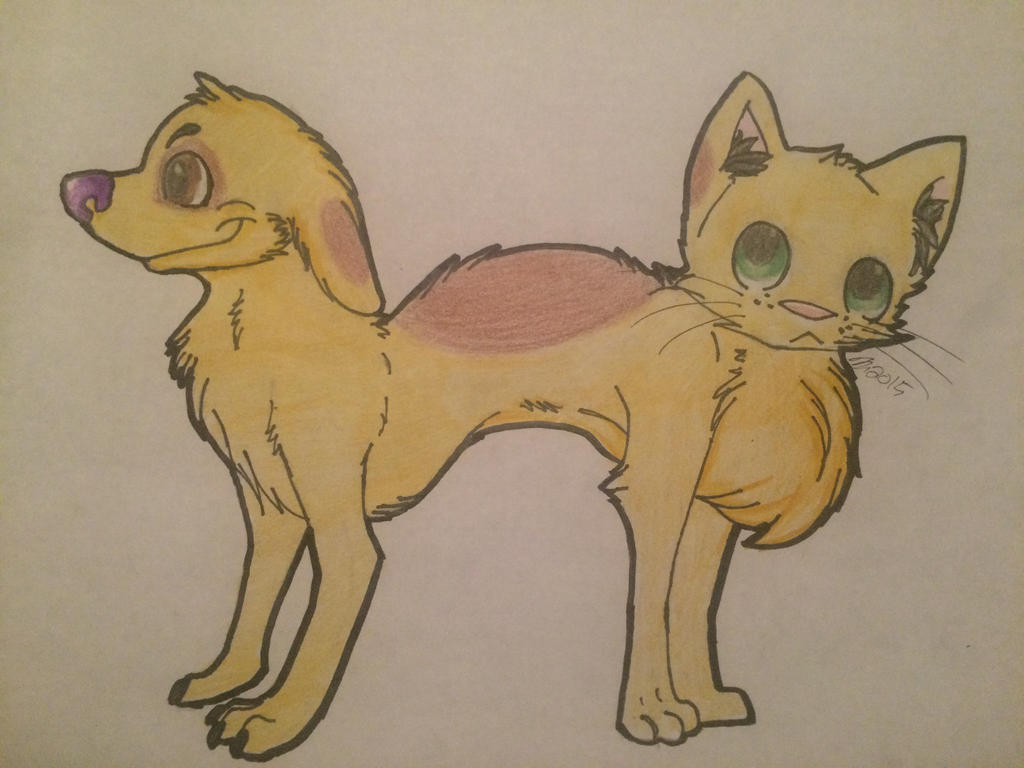 (Request) Catdog by jessicaosteen96