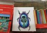 Mr. Bug