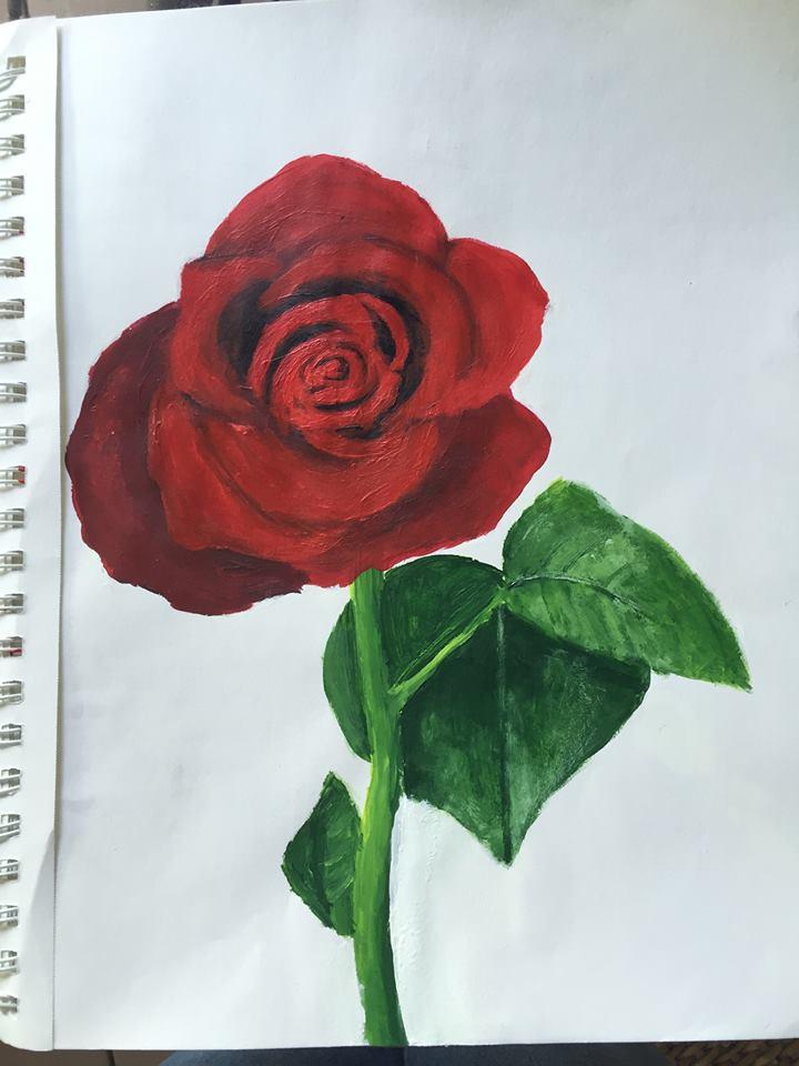 Rose (please critique) by EnviroArt