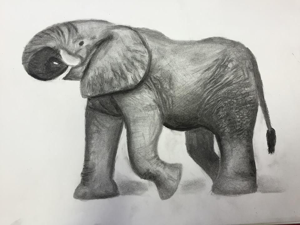 Elephant (please critique) by EnviroArt