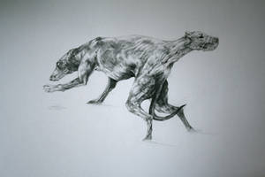 the greyhound and the devil