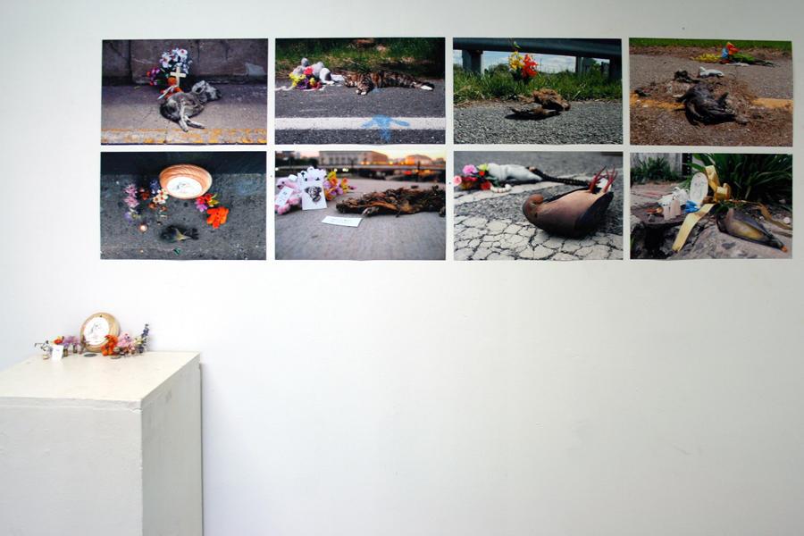 roadkill memorials by edelias