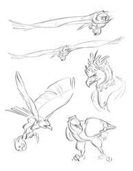 Harpy Eagle Sketches