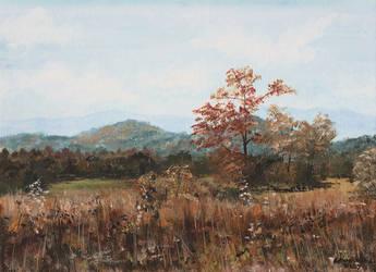 The Grassland by PellucidMind